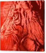 Red Head Tiger Canvas Print