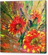 Red Hot Summer Flower Canvas Print