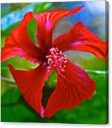 Red Hyacinth In Bourbon Resort Gardens Near Iguazu Falls National Park-brazil  Canvas Print