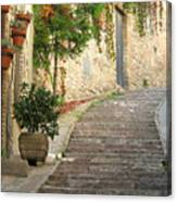 Red Ivy And Steps In Assisi Italy Canvas Print