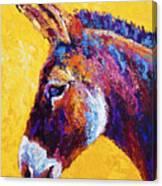 Red Jenny Canvas Print