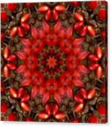 Red Kaleidoscope No. 1 Canvas Print