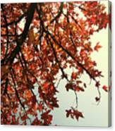 Red Life Canvas Print