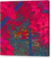 Red Maple 1 Version 1 Canvas Print