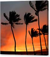 Red Maui Sunset Hawaii Canvas Print