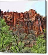 Red Mountains Zion National Park Usa Canvas Print