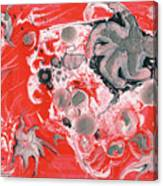 Red Nebula Canvas Print