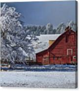 Red On White Canvas Print