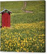 Red Outhouse 6 Canvas Print