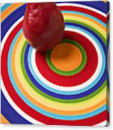 Red Pear On Circle Plate Canvas Print