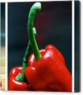 Red Pepper Triptych Canvas Print