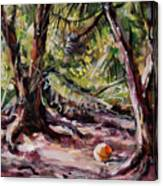 Red Pines Floater Canvas Print