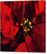 Red Poinsettia Floral Art Canvas Print
