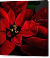 Red Poinsettia Merry Christmas Card Canvas Print