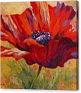 Red Poppy II Canvas Print