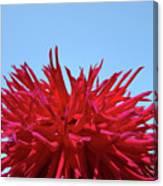 Red Purple Dahlia Flower Art Print Giclee Baslee Troutman Canvas Print
