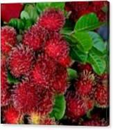 Red Rambutan And Green Leaves Canvas Print