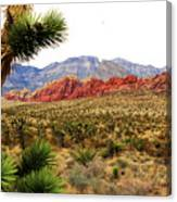 Red Rock Canyon Canvas Print