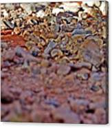 Red Rock Canyon Stones 1 Canvas Print