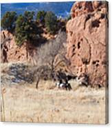 Red Rock Riders Canvas Print