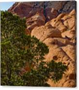 Red Rock Textures Canvas Print