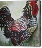Red Rooster Canvas Print