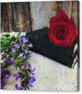 Red Rose And Sage With Vintage Books Canvas Print