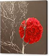 Red Rose Ball In Field Of Gray Canvas Print