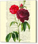 Red Roses For Valentine Canvas Print