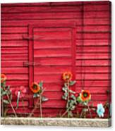 Red Sided Wall Canvas Print