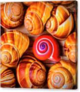 Red Snail Shell Canvas Print
