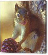 Red Squirrel With Pine Cone Canvas Print