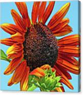 Red Sunflowers-adult And Child Canvas Print