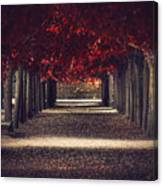 Red Surreal Path  Canvas Print