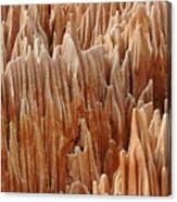 red Tsingy Madagascar 4 Canvas Print