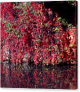 Red Waste Canvas Print