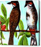 Red-whiskered Bulbul Bird, #246 Canvas Print