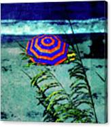 Red-white-blue Canvas Print