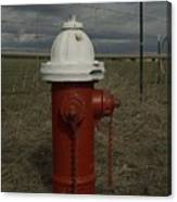 Red  White Hydrant Canvas Print