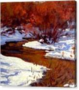 Red Willow Creek Canvas Print