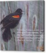 Red Wing Blackbird Canvas Print