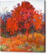 Red Woods Painting Canvas Print
