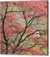 Red Zen Canvas Print