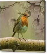 Redbreast Bird Canvas Print
