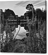 Redd's Pond Lupines Sunrise Black And White Canvas Print