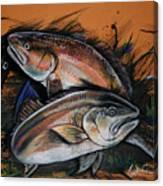 Redfish Frenzy Canvas Print