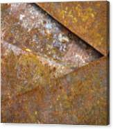 Redox In Line 2 Canvas Print