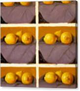Redundant Lemons Canvas Print