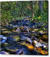 Reeder Creek II Canvas Print