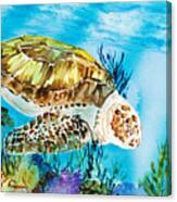 Reef Surfin Canvas Print